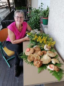 Vrtnarjenje in gobarjenje MCP